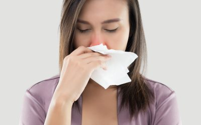 Allergy Proof Your Carpets and Upholstery