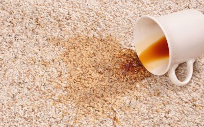 Treat Spills & Stains with Speed
