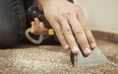 Dry Out Wet Carpet