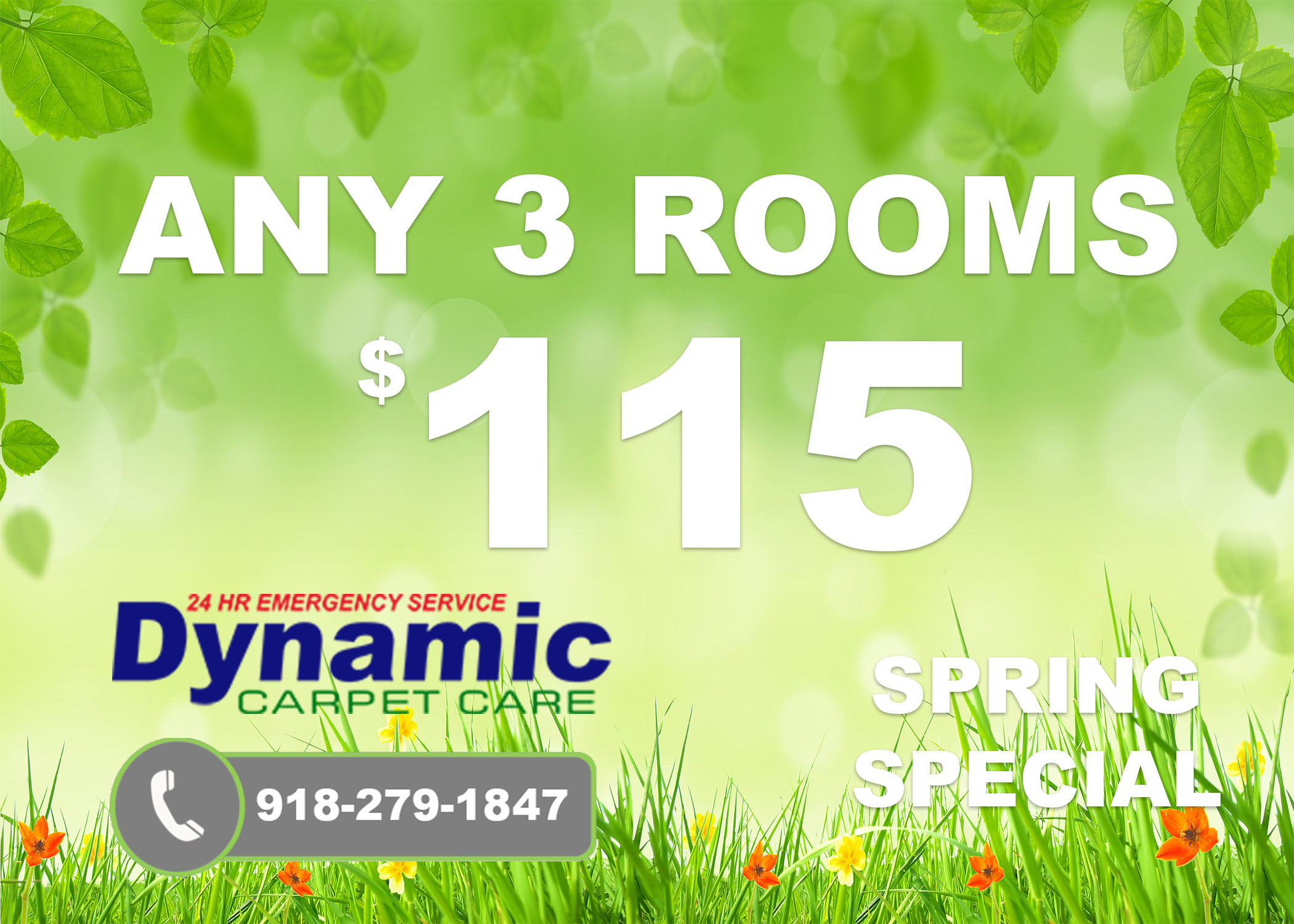 spring Special Carpet Cleaning